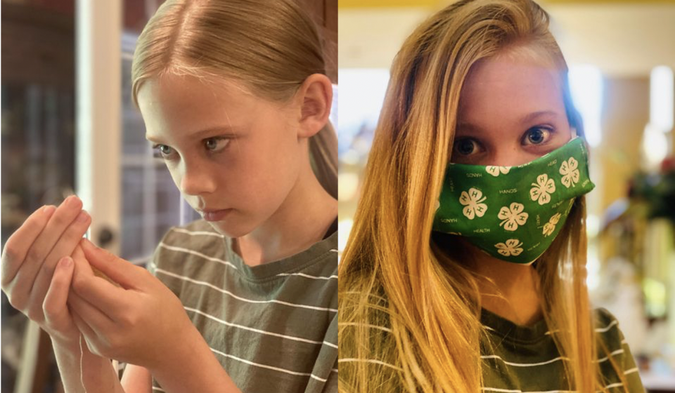 4-H Project Mask